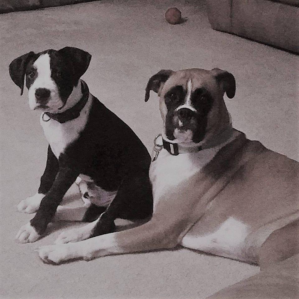 George & Sophie Chernutan