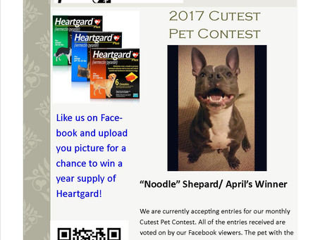 Congratulations to our first Cutest Pet Contest winner!