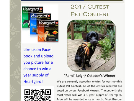 Cutest Pet Contest Winner October 2017! Post a picture for a chance to win a year supply of Heartgar