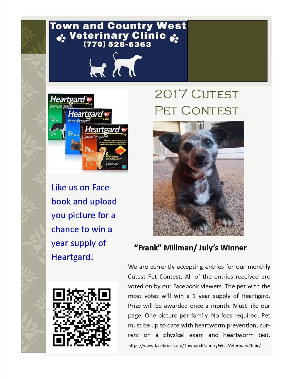 Facebook Picture Contest