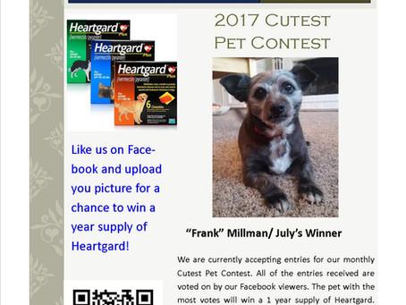 Cutest Pet Contest Winner July 2017