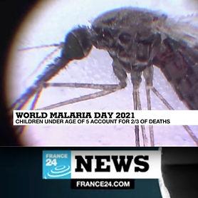 World malaria day 2021.jpg