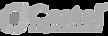 castel-logo%252520gris_edited_edited_edi