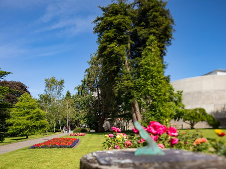 International recognition for iconic UCC tree collection