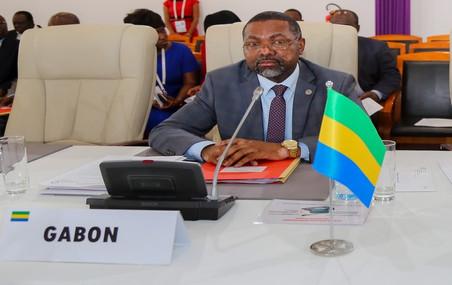 GABON: PAS DE VIOLATION DE LA CONSTITUTION SELON L'AMBASSADEUR DU GABON EN FRANCE