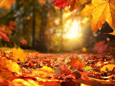 Autumn Rituals
