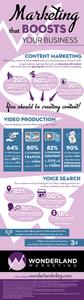 wonderland marketing infographic