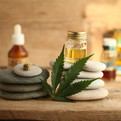 cannabis-cbd-product-oil
