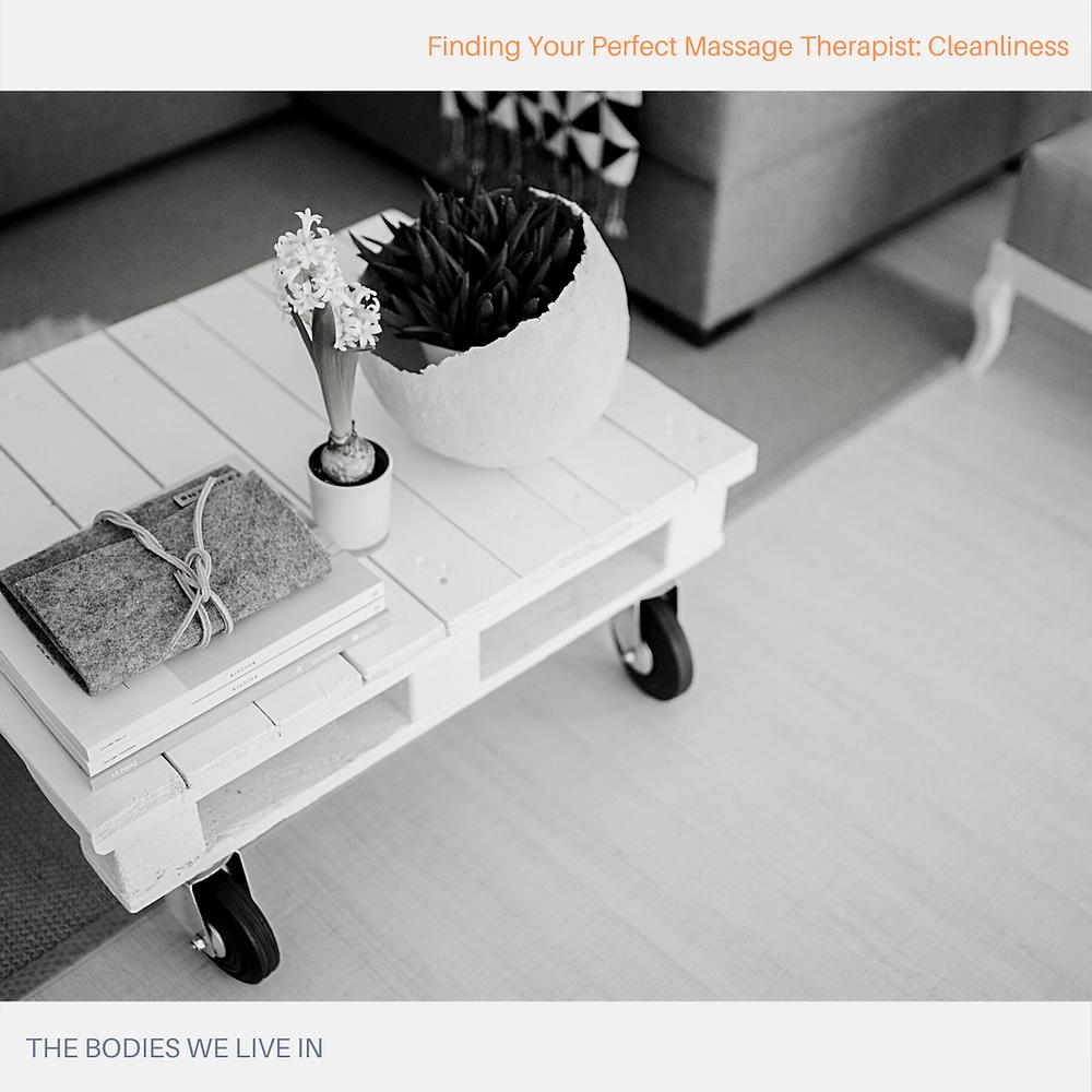 anatomy of the massage table holland mi