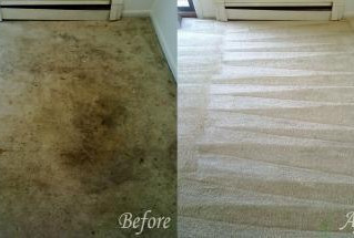5 Costly Carpet Cleaning Misconceptions