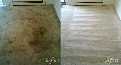 carpet cleaning elk grove.jpg