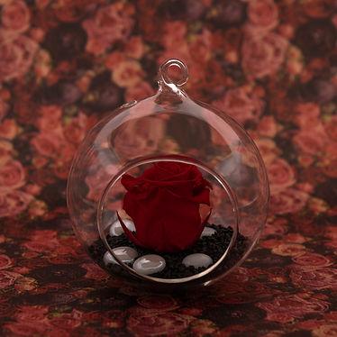 Saint Valentin - Julie Flora