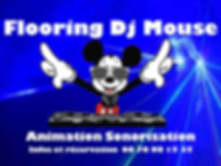 Dj Mouse animateur mariage Langres Haute-Marne Dijon Côted'Or