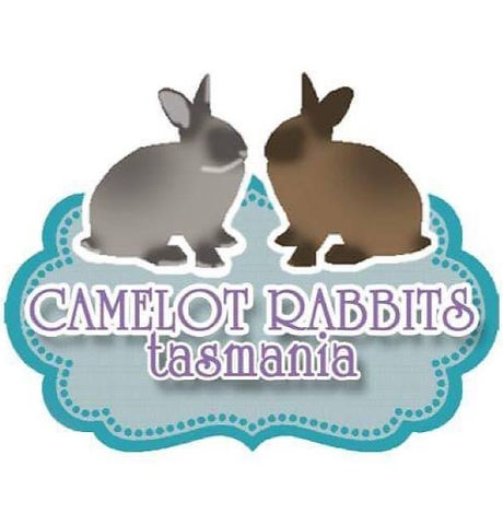Camelor%20Rabbits%20Tasmania_edited.jpg
