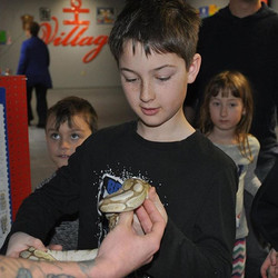 Double tap if you love reptiles!! Come and see us TOMORROW for our Reptile Show at 1_30 pm where you