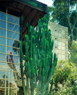 Freeman House, Frank Lloyd Wright