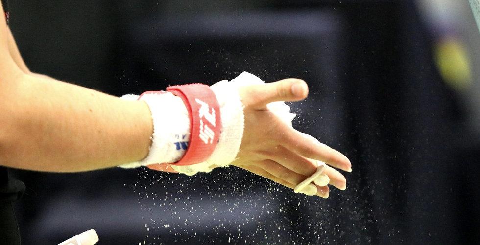 Etoile Saint Amandoise - ESA - Club de gymnastique