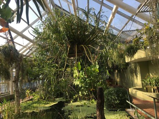monjackson_botanical_garden