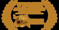 Global_Accolade_AVM2019 Award.png