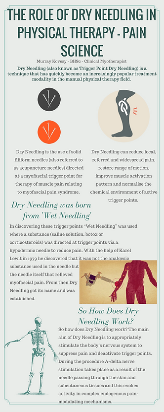 The Role of Dry Needling in Physical Therapy