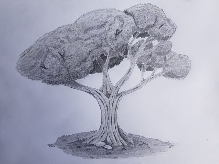 Now it's time for a couple trees..jpg