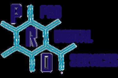 PRO DIGITAL SERVICES LOGO.png