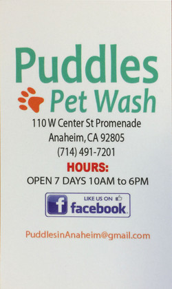 Puddles Pet Wash