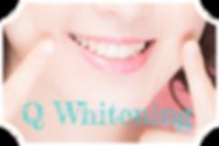 qw_logo.png