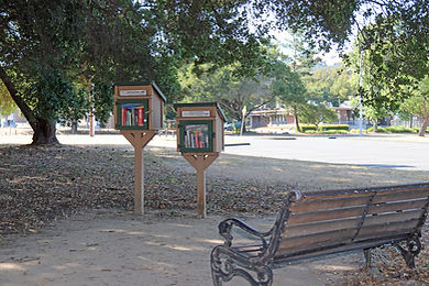 Library- 2.jpg