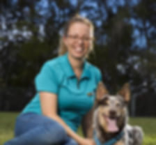Wholefood Pet Market, Gold Coast, Miami, Dog Food, Cat Food, Raw Pet Food, Pet Shop, Pet Store