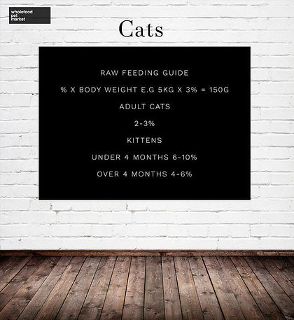 Raw Cat Feeding Guide, Wholefood Pet Market, Miami Gold Coast, Raw Cat Food