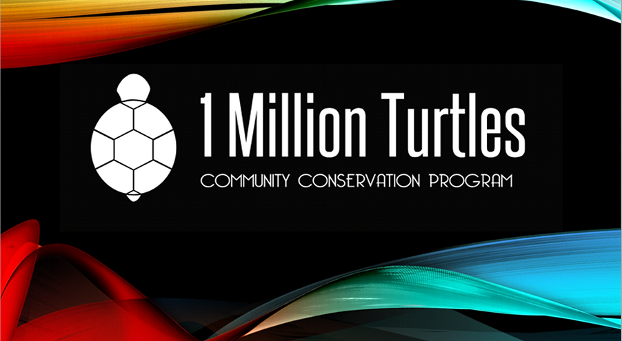 1 miliion Turtlesa.png