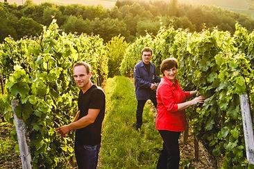 Weingut Staab - Eva, Peter und Christian bei der Arbeit im Weinberg