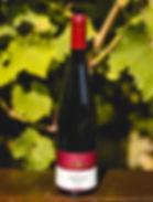 Weingut Staab - Spätburgunder