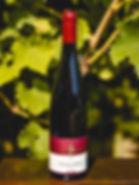 Weingut Staab - Portugieser