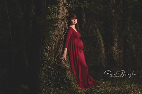 Photographe grossesse Autun