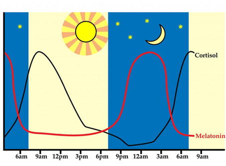Seeking the Sandman-how to sync your natural body clock so that you can get a good night's sleep