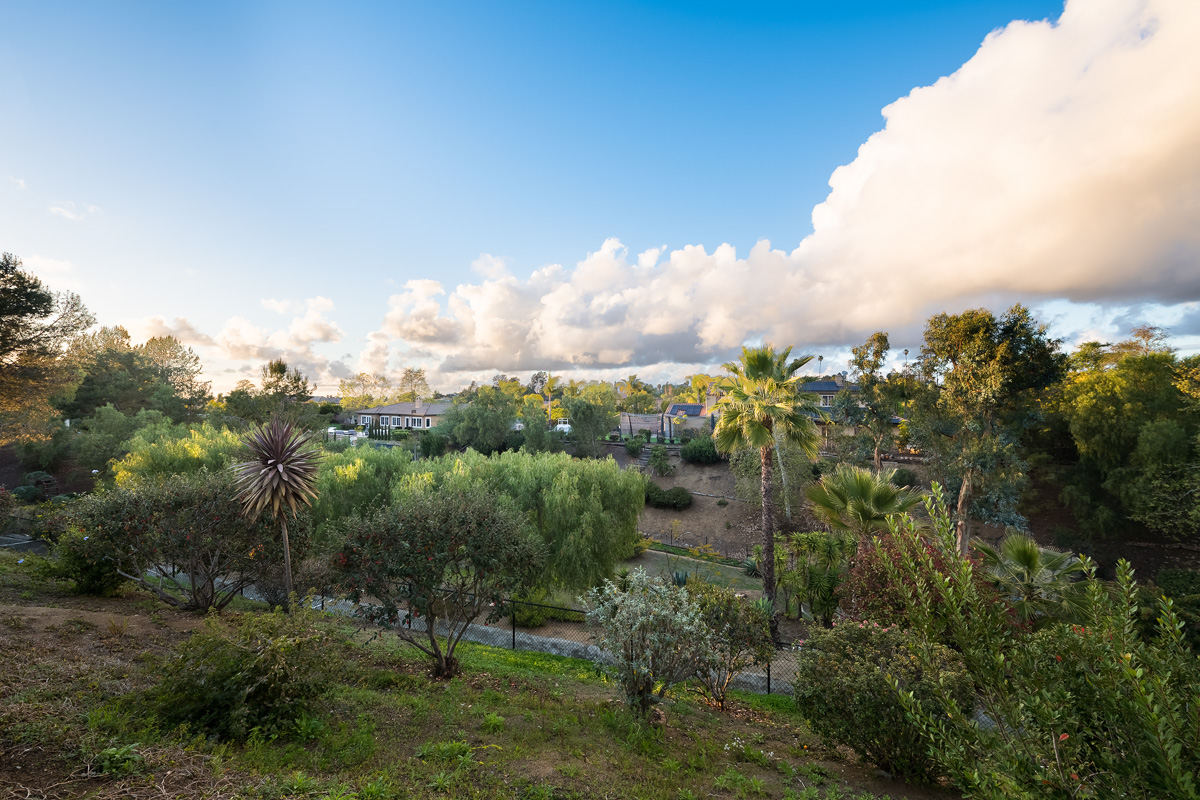 1336 Lupine Hills Dr_0105-HDR