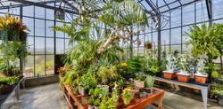 pavilion-park-greenhouse
