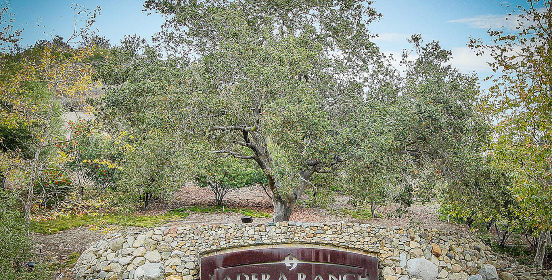 Ladera Ranch Sign.jpg