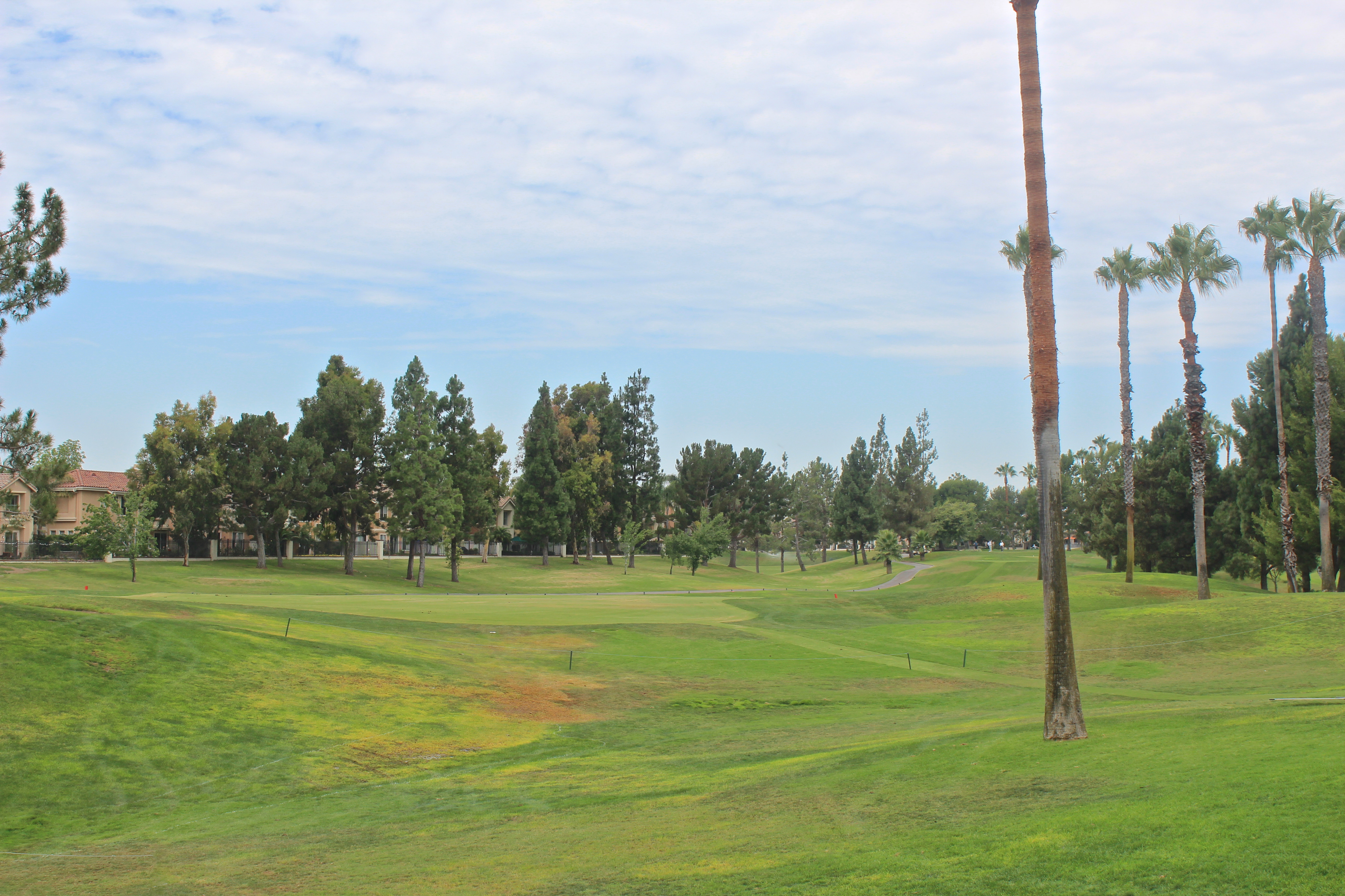 Tustin Ranch Golf 2