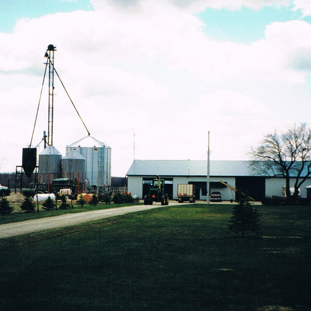 Home farm in 1996