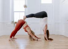 Back Pocket Yoga YTT
