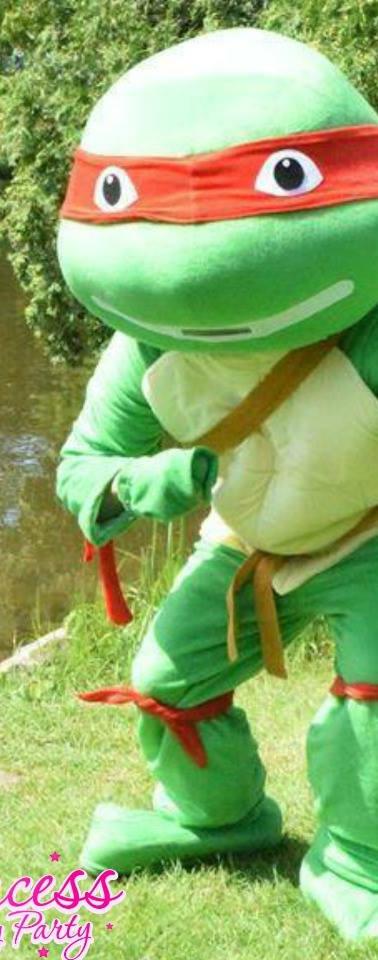 Ninja Turtle.jpg