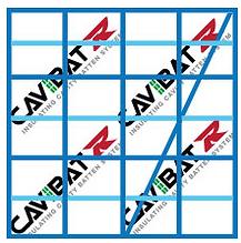 CAVIBAT SYSTEM 3.png