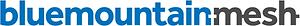blue mountain mesh logo.png