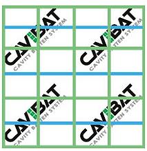 CAVIBAT System 2.png
