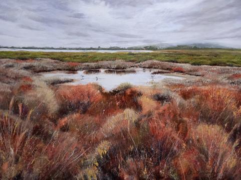 Wetlands - 75cm x 100cm - acrylic -SOLD - Winner TSA Supreme Award 2021