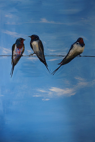 3 swallows on a line with a union jack