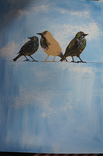 3 Starlings on the line